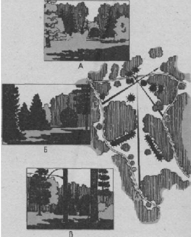 Несколько парковых картин, воспринимающихся с композиционно увязанных между различных видовых точек собой