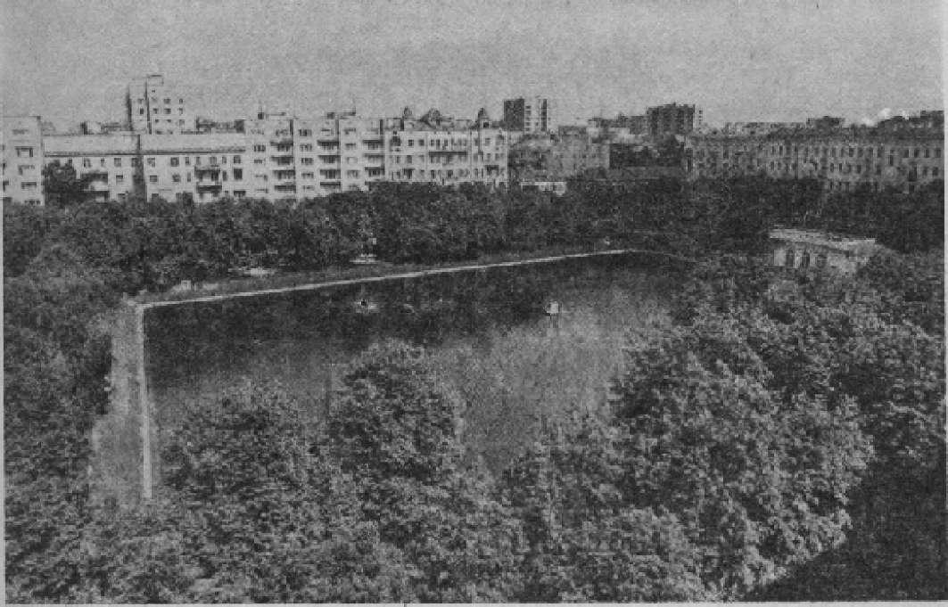 Пионерский пруд в Москве