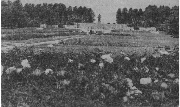 Мемориальный ансамбль на Пискаревском кладбище в Ленинграде