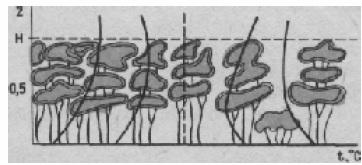 Вертикальное распределение температуры воздуха в насаждениях с различной сомкнутостью полога