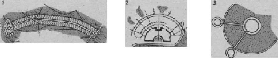 Схема систем зеленых насаждений городов с конца XIX в. до настоящего времени